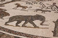 Africa, North Africa, Morocco, Roman Ruins at Volubilis, Mosaic Tiles