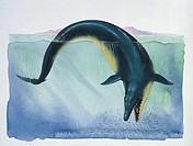 Palaeozoology - Eocene - Basilosaurus (art work by Graham Rosewarne)