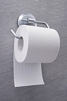 still life of toilet roll and holder