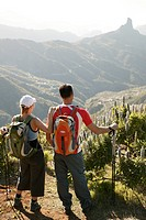 Mate, hikers, stands, back view, pause, traveling_equipment, mountain scenery