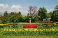 Italy, Lago Maggiore, Verbania, villa Taranto, park, lake,grounds, garden, park, grounds, flower bed, flowers, tulips, nature, symbol, time_out, silen...