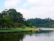 Brazil, Sao Paulo, Ibirapuera_Park, lake,Latin America, South America, city, park, Parque_do_Ibirapuera, city_park, park, nature, people_park, lawn, w...