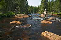 Canada, island Newfoundland, Tuckamore Wilderness Lodge, woman, young, water, stands, fishes, North America, viking Trail, destination, vacation, adve...