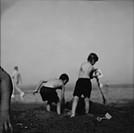 boys, beach, digging