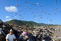 Sint Maarten, the great salt pond landfill is used as a garbage dump People live here
