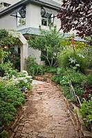 Sedum, Juniper, Castor Bean beside weathered stone path to home