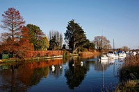 Beautiful Autumnal view of the River Frome near Wareham Quay