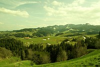 panorama, meadows, grŸn, yellow, green, nature, mountains