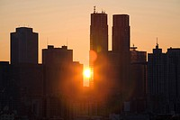 Sunrise of the Tokyo Metropolitan Government Office