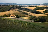 Rolling hills and building in countryside in Tuscany, Italy