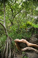 Nude Caucasian young adult woman in lush forest stretched out over rock