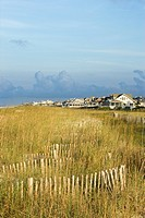 Natural beach area with houses