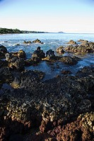 Lave rocky coast in Maui, Hawaii