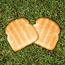 Two slices of toast on grass