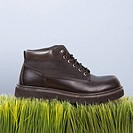 Studio shot of black leather shoe resting on grass