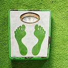 Vintage foot scale with green footprints against green carpet