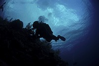 Diver in silhouette, Grand Cayman Island, Cayman Islands, Caribbean