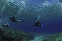 Divers swimming over spur and groove reef, Grand Cayman Island, Cayman Islands, Caribbean