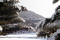 snowscape, snow, landscape, winter, mountain, scenery, tree