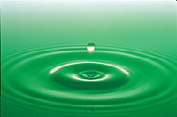 water drop, green, ripple, surface, natural world, wave