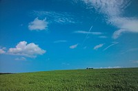 nature, scenery, field, sky, landscape, cloud
