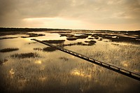 Scenic wooden walkway stretching over wetlands at sunset on Bald Head Island, North Carolina.