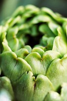 Artichoke, extreme close_up