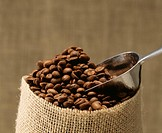 Coffee bean (thumbnail)