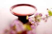 Sake and Thalictrum rochebrunianum (thumbnail)