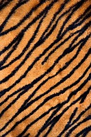 Close up shot of tiger print carpet