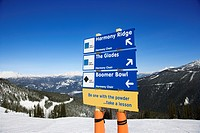 Ski resort trail direction signs