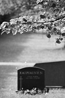 Black And White, Cemetery, Close_Up, Day, Focus On Foreground, Leaves