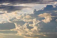 Cloud, Cloudscape, Cumulus Cloud, Day, Fluffy