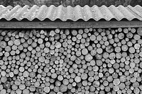 Black And White, Close_Up, Day, Firewood, Large Group Of Objects