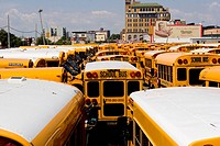 NEW YORK, SCHOOL BUS, YELLOW BUS, AMERICAN BUS, USA