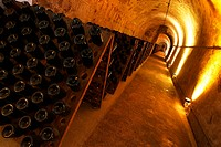 bottles, wine, wine bottles, rows, shelves, array