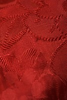 Close_Up, Embossed, Detail, Clothing, Appearance