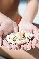 Hands with shells (thumbnail)