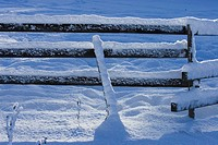 Close_Up, Covering, Day, Fence, Frozen