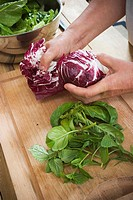 Cabbage, Cutting Board, Foodstuff, Fresh, Green Vegetables (thumbnail)