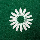 Close_up of vintage fabric with white daisy print on green