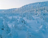 winter, landscape, snowscape, snow, mountain, forest, nature