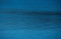 Ripples On Water Surface