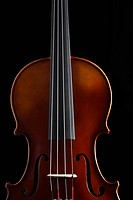 Close_up of violin