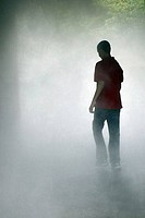 Rear view of a boy walking in the fog