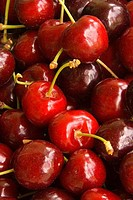 Close_up of Lambert cherries