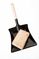 Wood briquette on Dustpan, elevated view