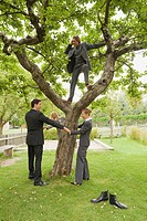 Germany, business people standing under tree, holding hands
