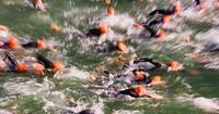 Austria, Lake Mondsee, Swimming competition