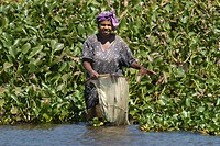 Woman fishing in a lake of the Ankarafantsika National Park Madagascar